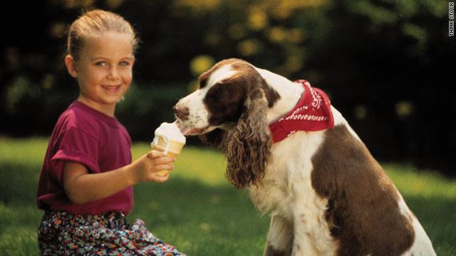 Can I Give My Dog Lactose Free Yogurt