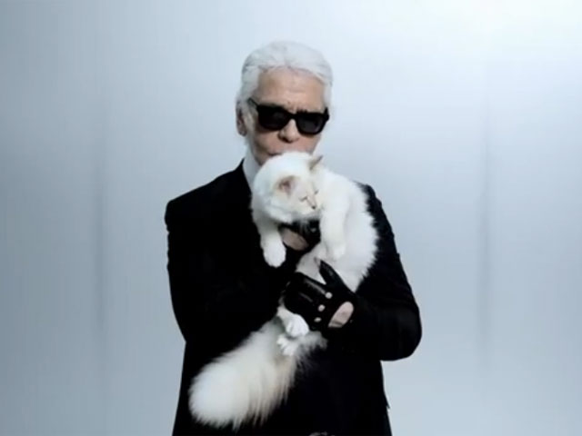 karl lagerfeld s cat choupette   everything you should know   three