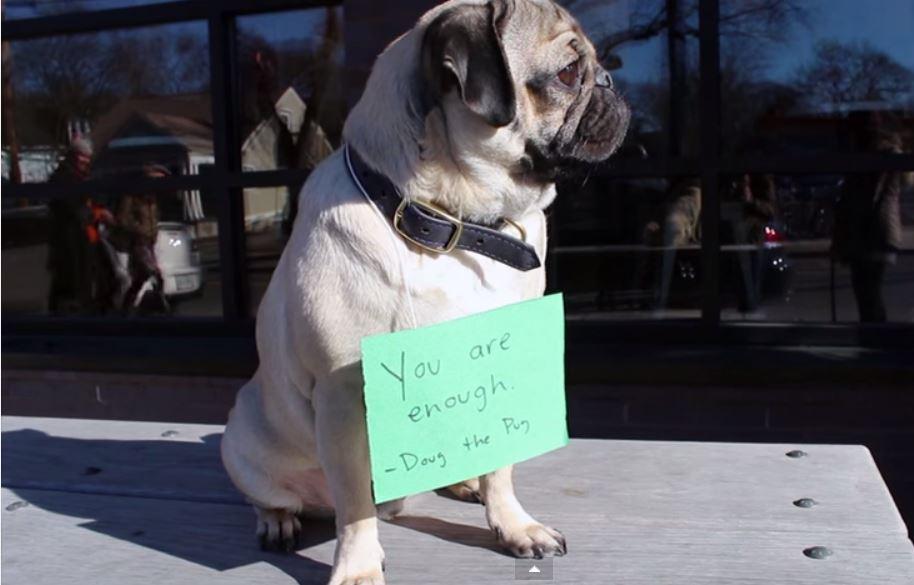 Doug The Pug Keeps His New Year's Resolution