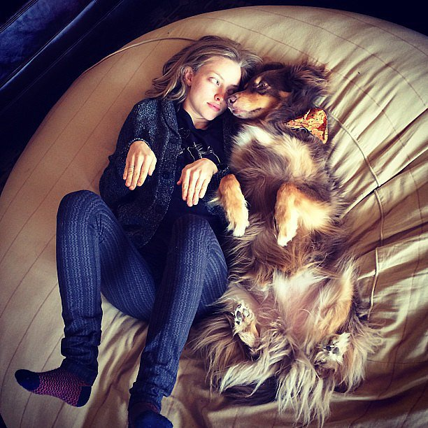 Seven Celebrities Who Love Dogs As Much As You Do