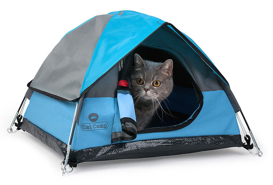 Tiny Tents For Cats Make Nap Time Purrrfect