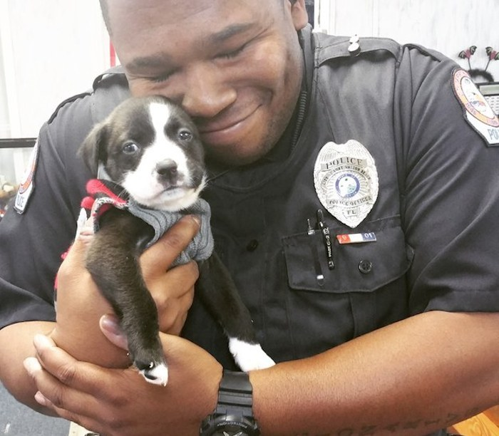Officer Finds True Pup Love While On The Job