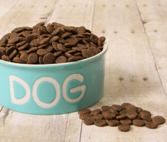 knowhowtoshopforthebestdogfood